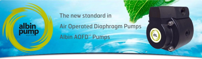 slider-albin-pumps